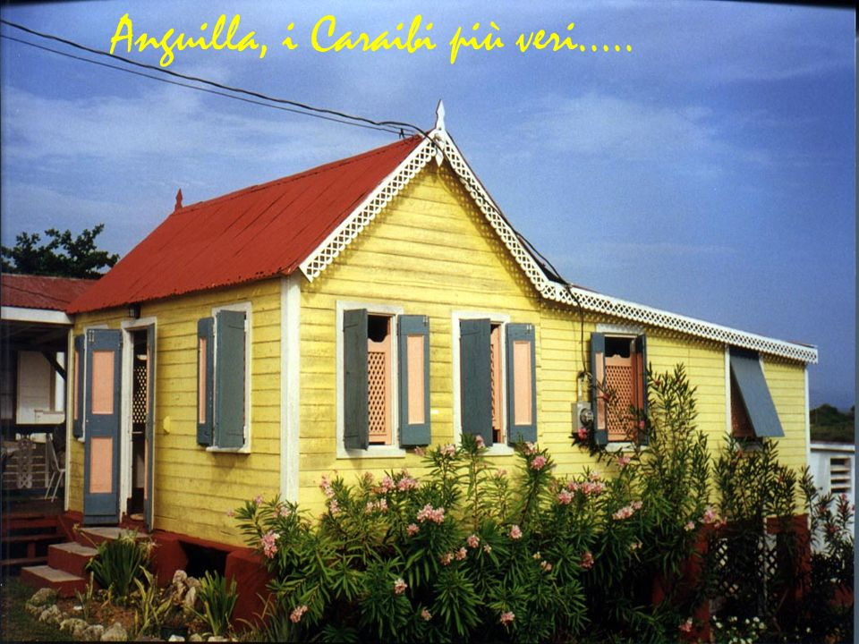 Anguilla, i Caraibi più veri…..