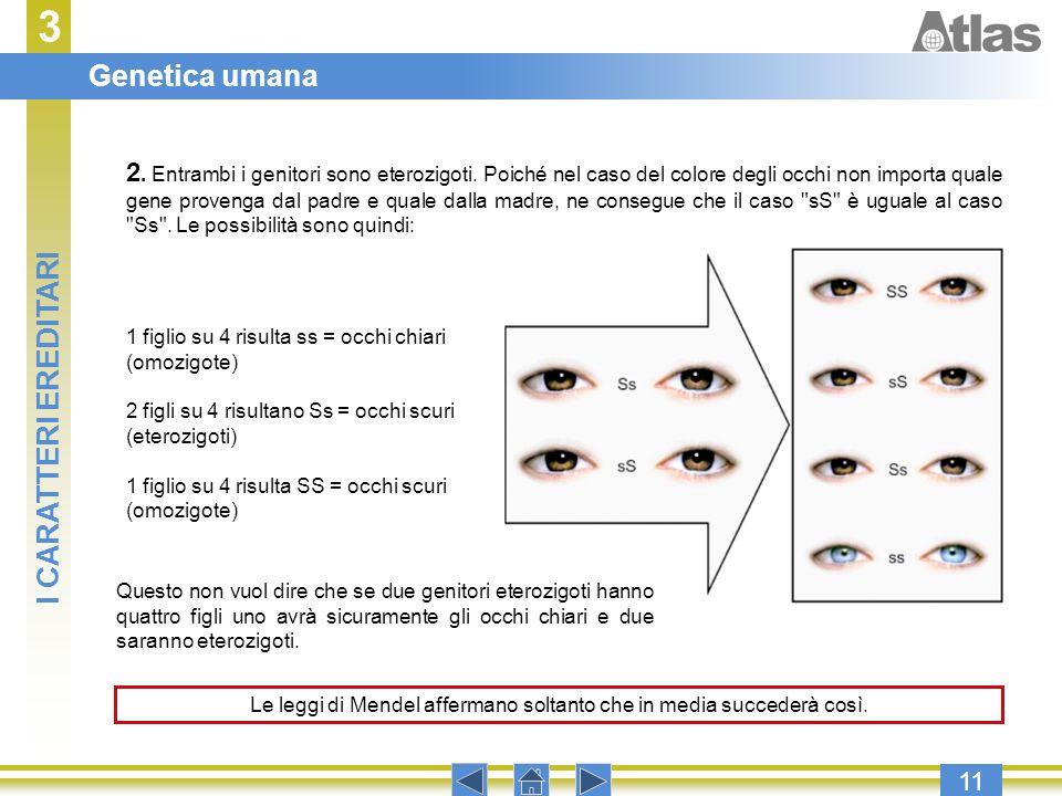3 11 1 figlio su 4 risulta ss = occhi chiari (omozigote) 2 figli su 4 risultano Ss = occhi scuri (eterozigoti) 1 figlio su 4 risulta SS = occhi scuri