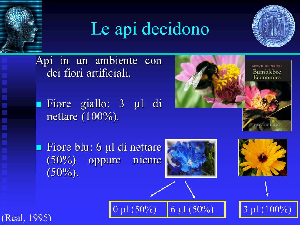 Le api decidono Api in un ambiente con dei fiori artificiali. Fiore giallo: 3 μl di nettare (100%). Fiore giallo: 3 μl di nettare (100%). Fiore blu: 6