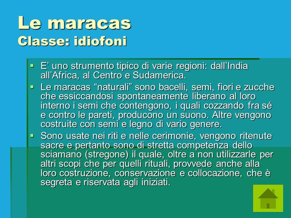 Le maracas Classe: idiofoni E uno strumento tipico di varie regioni: dallIndia allAfrica, al Centro e Sudamerica. E uno strumento tipico di varie regi