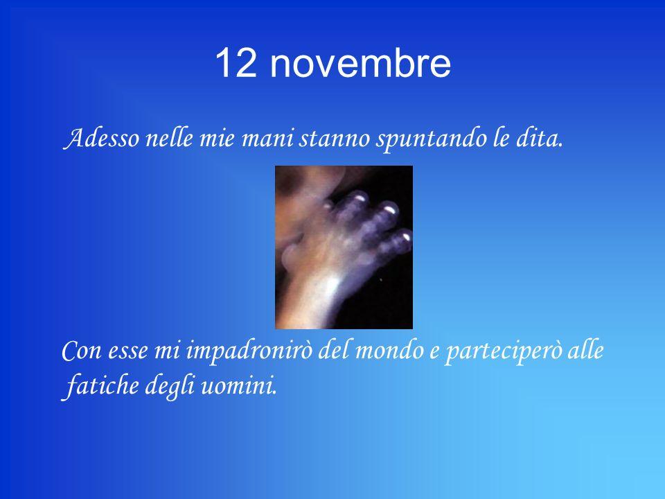 12 novembre Adesso nelle mie mani stanno spuntando le dita.