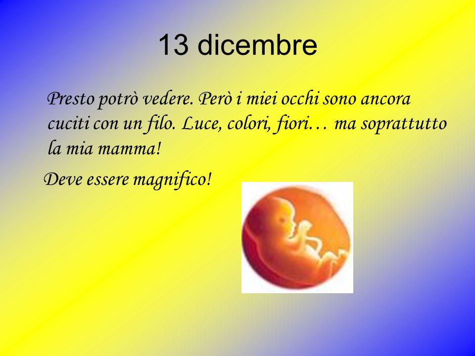 13 dicembre P resto potrò vedere. Però i miei occhi sono ancora cuciti con un filo. Luce, colori, fiori… ma soprattutto la mia mamma! Deve essere magn