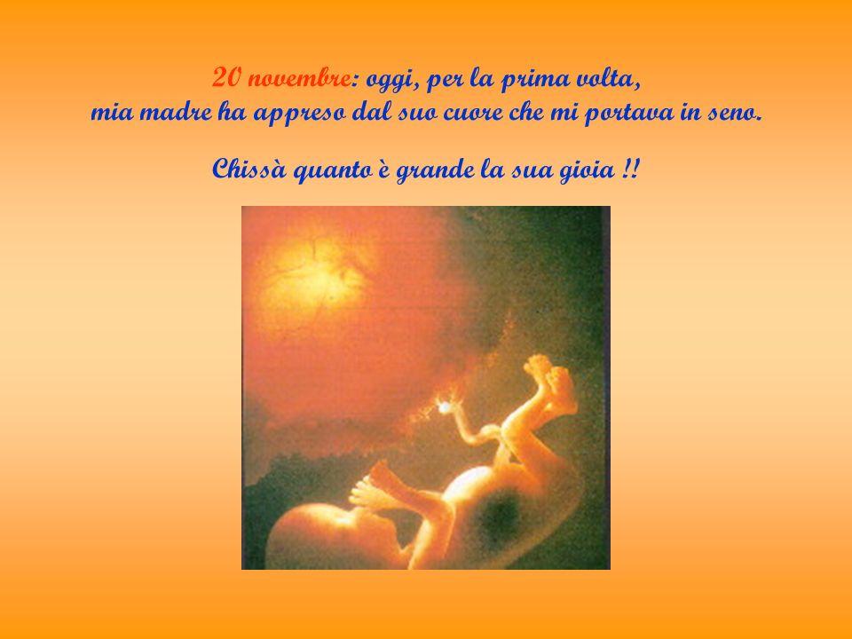 20 novembre: oggi, per la prima volta, mia madre ha appreso dal suo cuore che mi portava in seno.