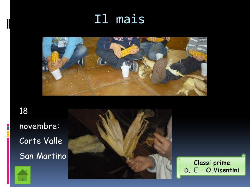 Il mais 18 novembre: Corte Valle San Martino Classi prime D, E – O.Visentini