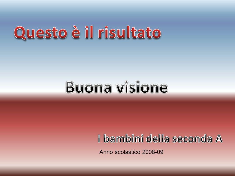 Anno scolastico 2008-09