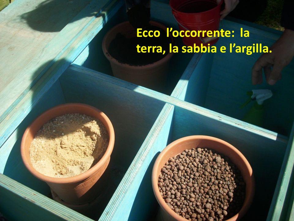 Ecco loccorrente: la terra, la sabbia e largilla.