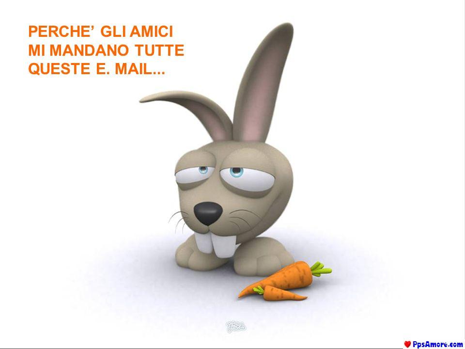 PERCHE GLI AMICI MI MANDANO TUTTE QUESTE E. MAIL...