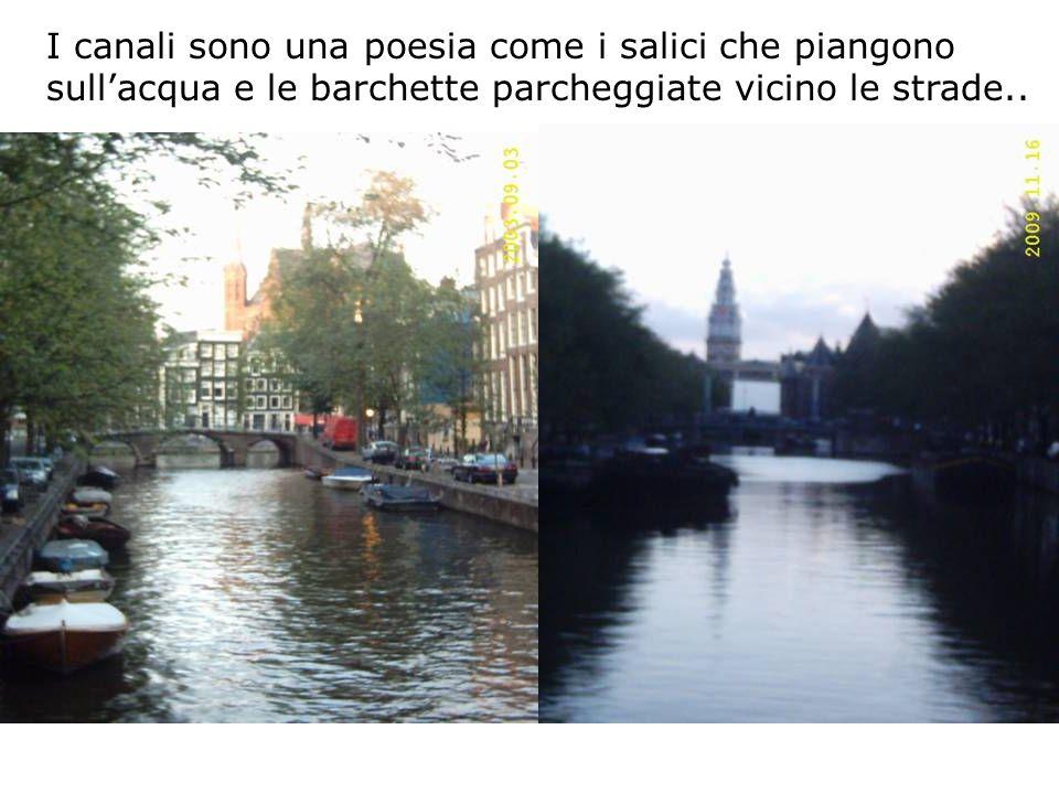 I canali sono una poesia come i salici che piangono sullacqua e le barchette parcheggiate vicino le strade..