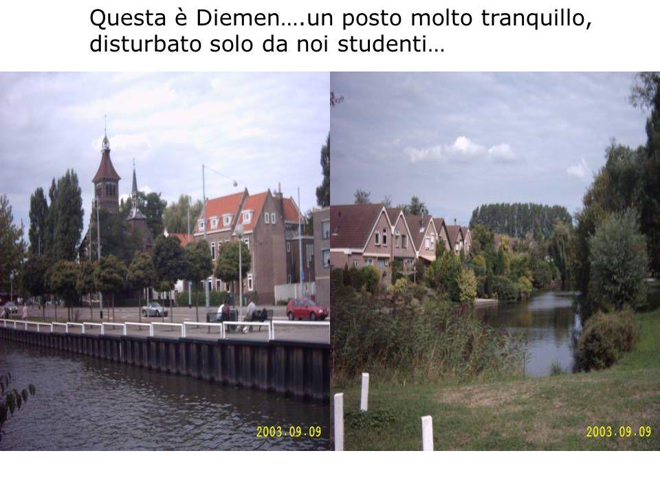Questa è Diemen….un posto molto tranquillo, disturbato solo da noi studenti…