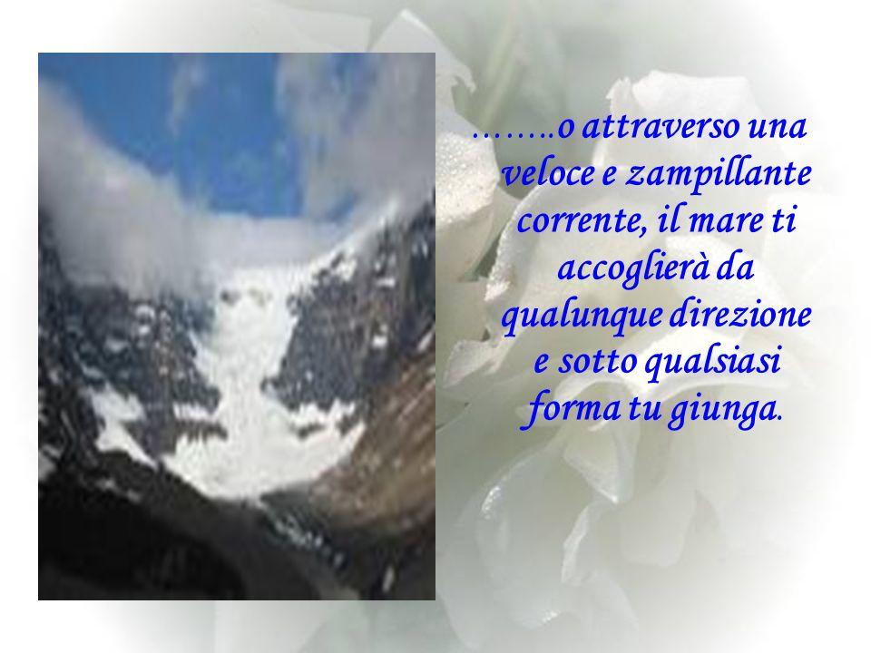 Tu sei un esperto arrampicatore e la vita è una grande montagna alla quale un giorno facesti una promessa: Salirò sino alla cima del tuo monte.