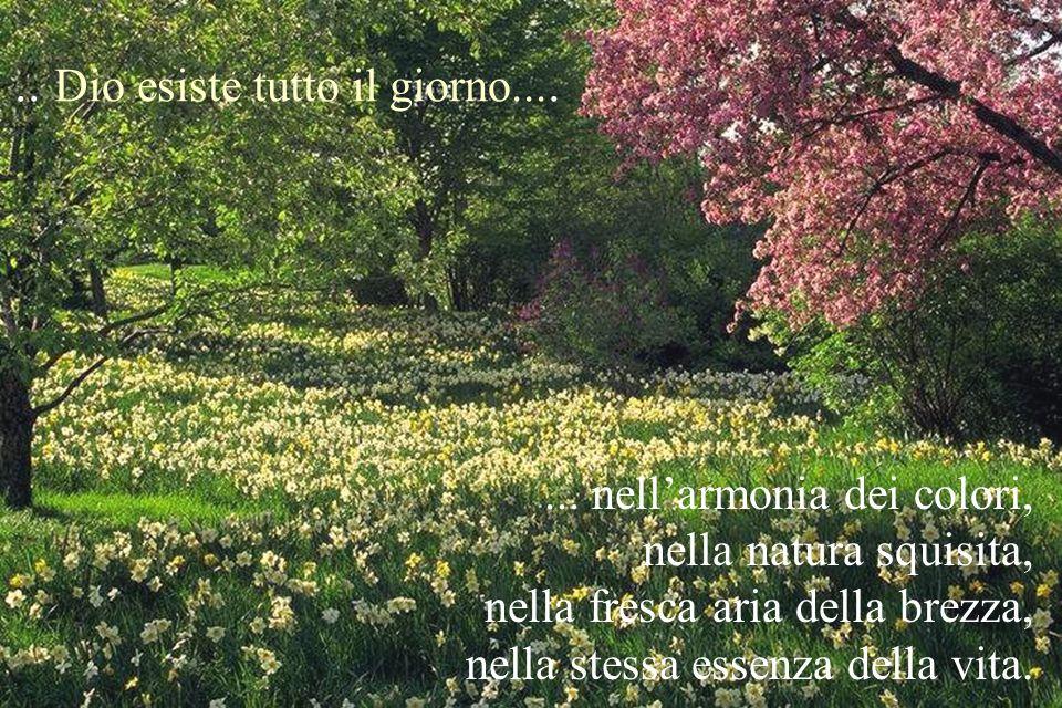 ... nellarmonia dei colori, nella natura squisita, nella fresca aria della brezza, nella stessa essenza della vita... Dio esiste tutto il giorno....