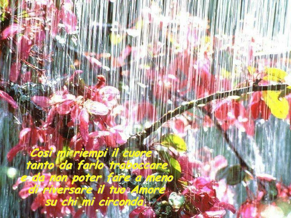…i miei occhi lacrimano per la gioia di conoscerti e il mio cuore é pieno di stupore di fronte alla tua meravigliosa presenza!