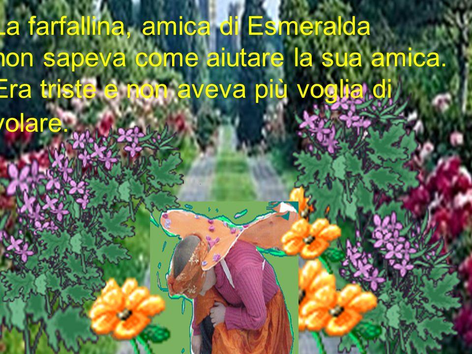 La farfallina, amica di Esmeralda non sapeva come aiutare la sua amica. Era triste e non aveva più voglia di volare.