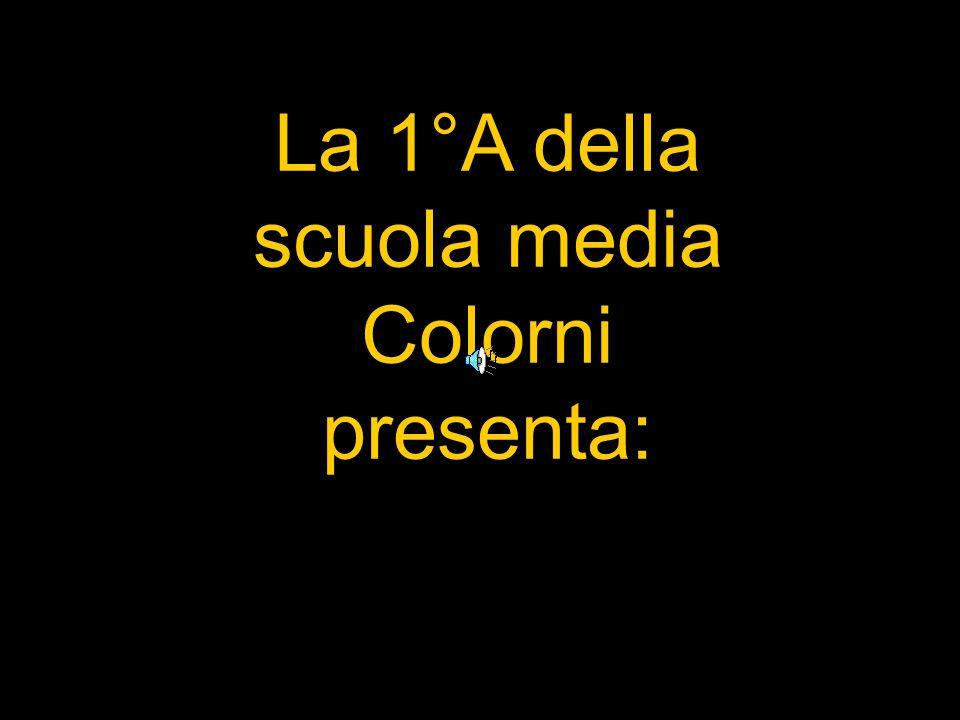 La 1°A della scuola media Colorni presenta: