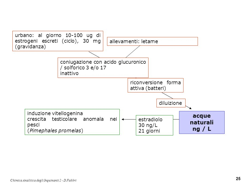 Chimica Analitica degli Inquinanti 2 - D.Fabbri 25 urbano: al giorno 10-100 ug di estrogeni escreti (ciclo), 30 mg (gravidanza) coniugazione con acido