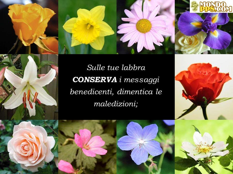 CONSERVA Nelle tue mani i fiori che ti hanno offerto, dimentica le spine che restarono;