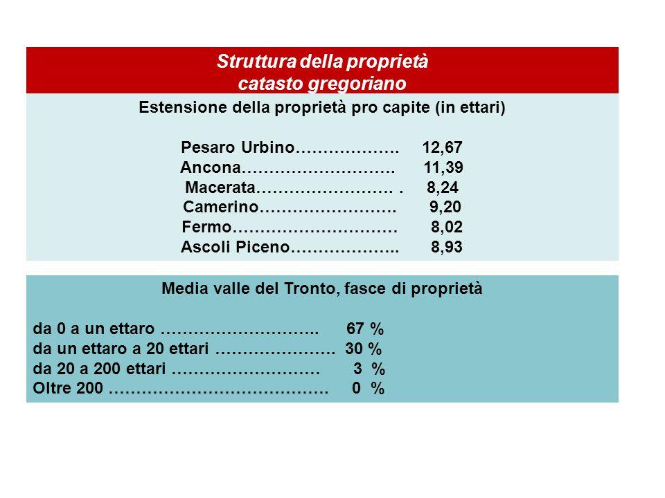 Struttura della proprietà catasto gregoriano Estensione della proprietà pro capite (in ettari) Pesaro Urbino………………. 12,67 Ancona………………………. 11,39 Macer