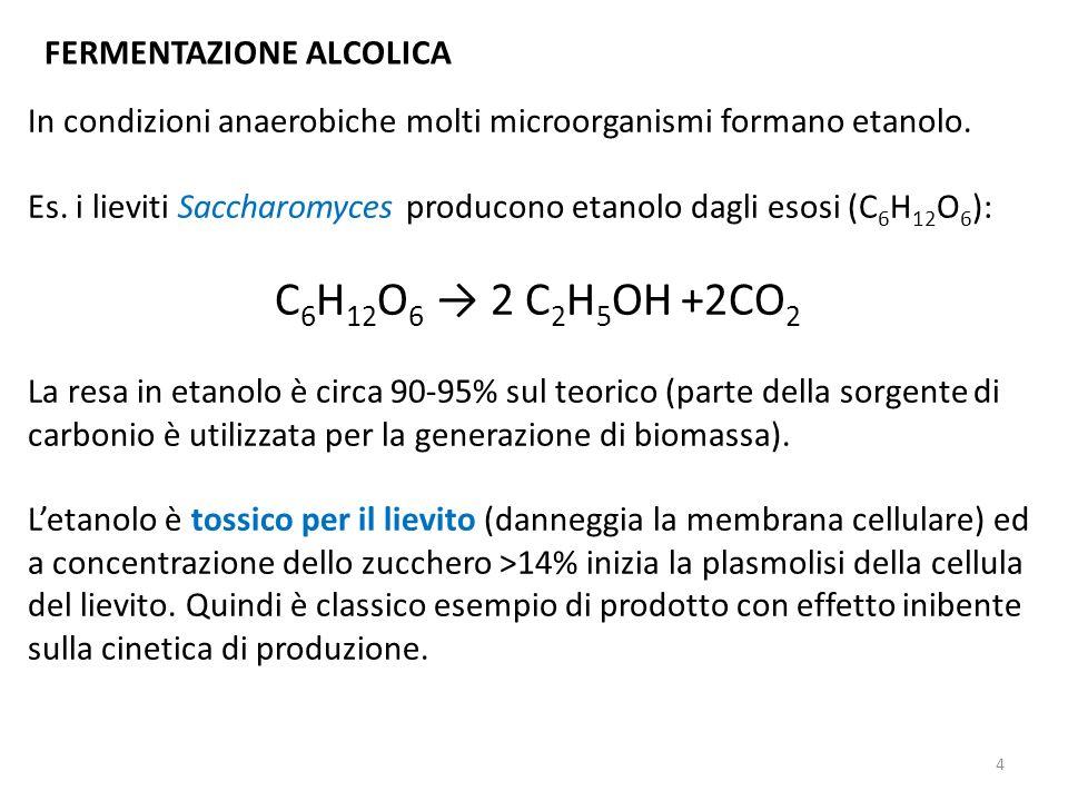 FERMENTAZIONE ALCOLICA In condizioni anaerobiche molti microorganismi formano etanolo. Es. i lieviti Saccharomyces producono etanolo dagli esosi (C 6