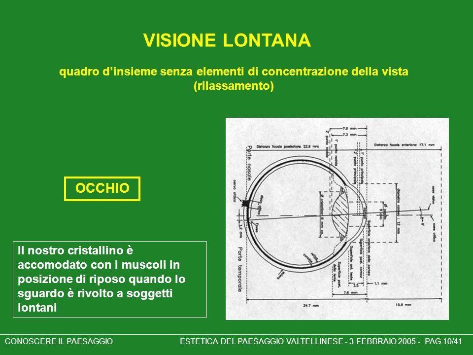 quadro dinsieme senza elementi di concentrazione della vista (rilassamento) CONOSCERE IL PAESAGGIO ESTETICA DEL PAESAGGIO VALTELLINESE - 3 FEBBRAIO 20