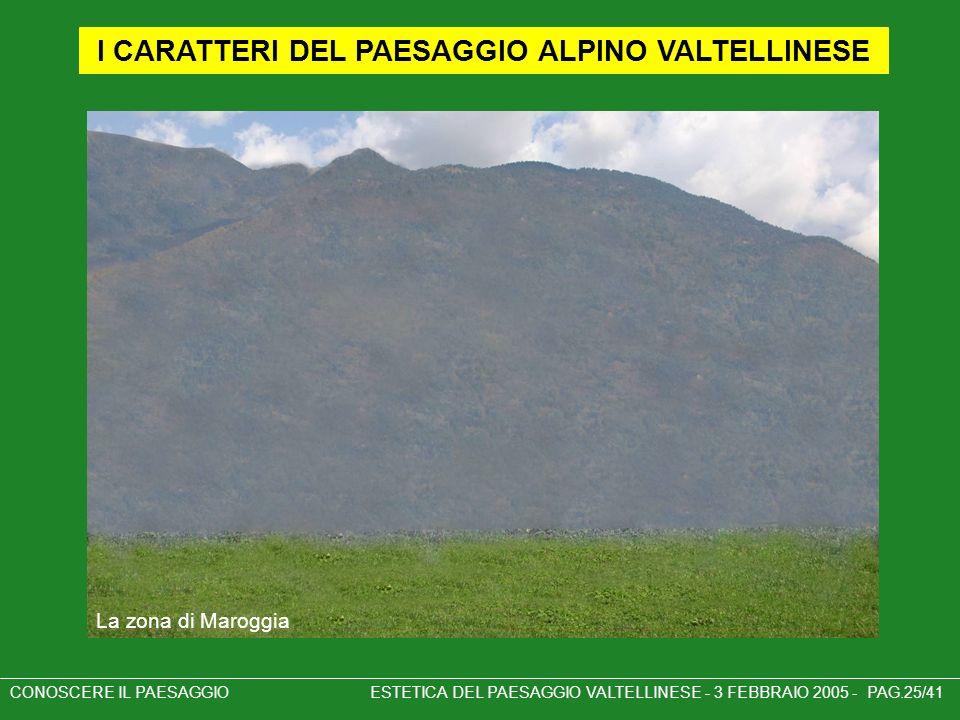 CONOSCERE IL PAESAGGIO ESTETICA DEL PAESAGGIO VALTELLINESE - 3 FEBBRAIO 2005 - PAG.25/41 I CARATTERI DEL PAESAGGIO ALPINO VALTELLINESE La zona di Maro