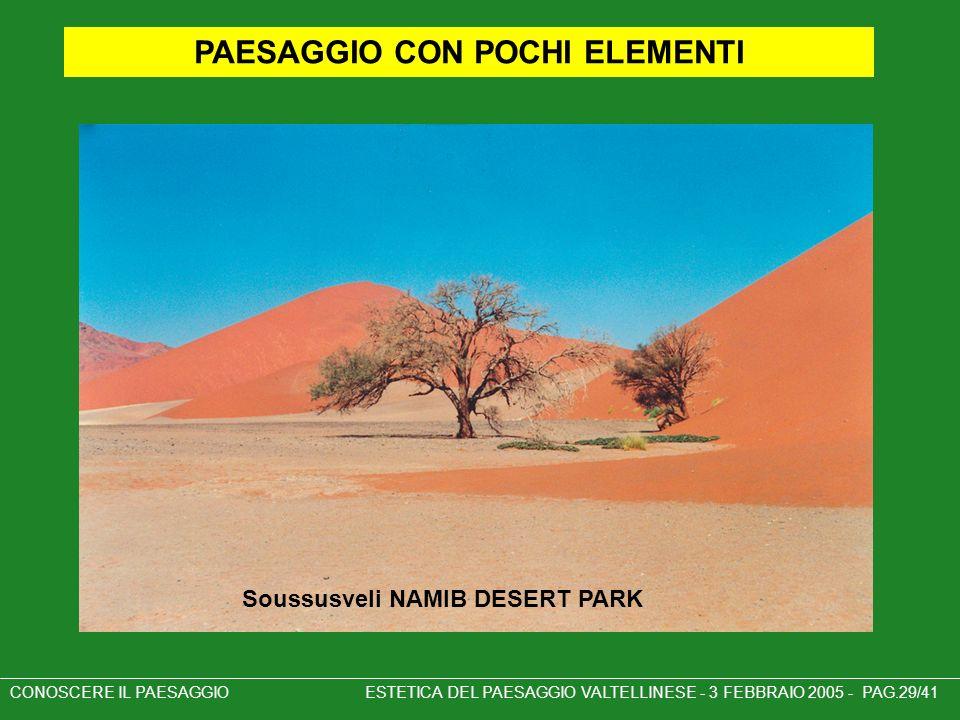 Soussusveli NAMIB DESERT PARK CONOSCERE IL PAESAGGIO ESTETICA DEL PAESAGGIO VALTELLINESE - 3 FEBBRAIO 2005 - PAG.29/41 PAESAGGIO CON POCHI ELEMENTI