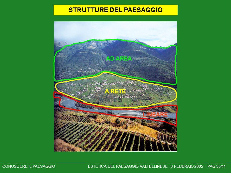 CONOSCERE IL PAESAGGIO ESTETICA DEL PAESAGGIO VALTELLINESE - 3 FEBBRAIO 2005 - PAG.35/41 STRUTTURE DEL PAESAGGIO AD AREA A RETE LINEARE