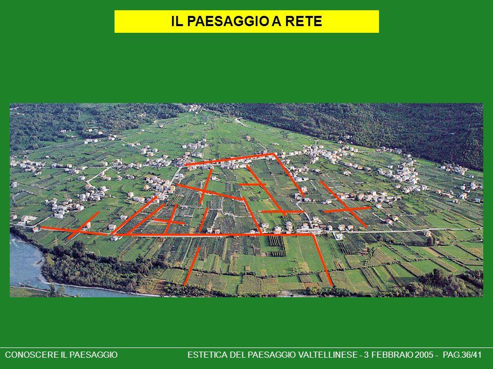 CONOSCERE IL PAESAGGIO ESTETICA DEL PAESAGGIO VALTELLINESE - 3 FEBBRAIO 2005 - PAG.36/41 IL PAESAGGIO A RETE