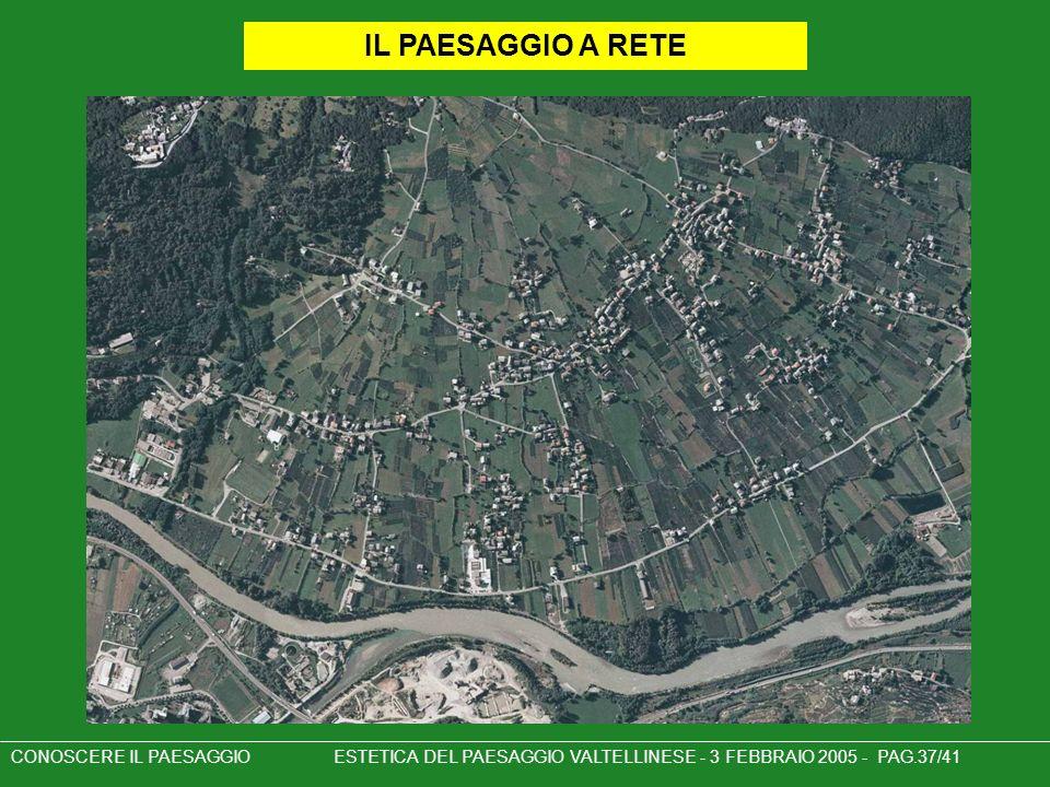 CONOSCERE IL PAESAGGIO ESTETICA DEL PAESAGGIO VALTELLINESE - 3 FEBBRAIO 2005 - PAG.37/41 IL PAESAGGIO A RETE