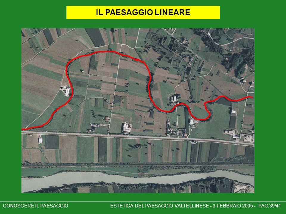CONOSCERE IL PAESAGGIO ESTETICA DEL PAESAGGIO VALTELLINESE - 3 FEBBRAIO 2005 - PAG.39/41 IL PAESAGGIO LINEARE