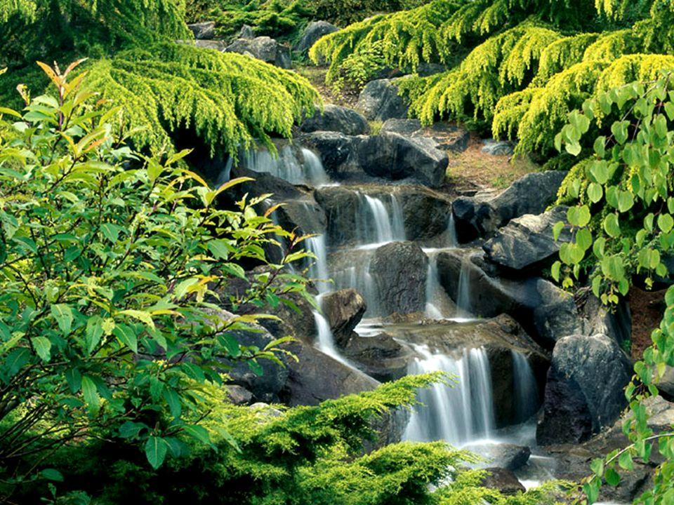 Sono gli ostacoli che permettono alle nostre acque di procedere. Nessuna roccia, per quanto dura e resistente sia, è capace di trattenere lacqua. Ques