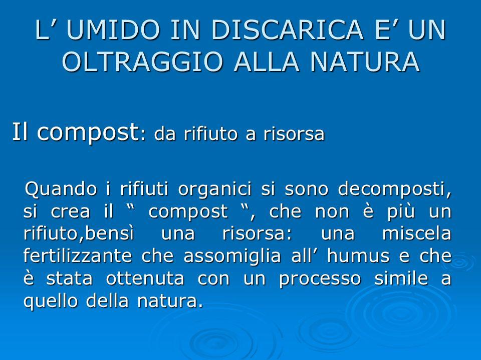 Compost L UMIDO IN DISCARICA E UN OLTRAGGIO ALLA NATURA