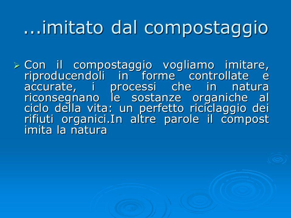 Il ciclo della natura Il ciclo della natura In natura la sostanza organica prodotta e non più utile alla vita (foglie secche, rami, spoglie di animali