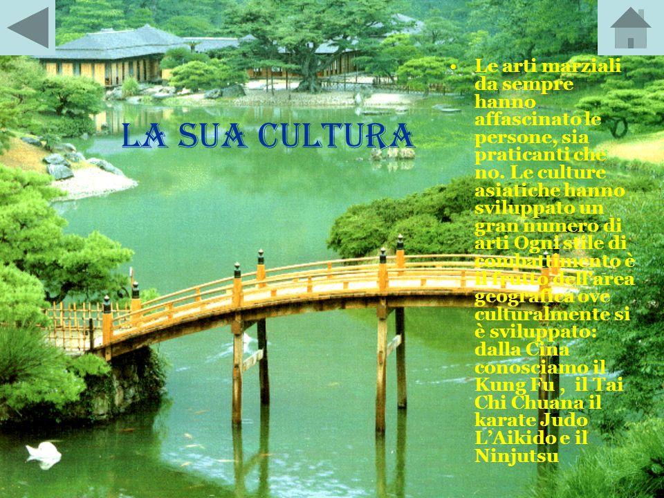 LA STORIA Il Karate nacque ad Okinawa (Giappone) nel XV secolo. Letteralmente Karate significa Combattimento a mano nuda. Conobbe una rigogliosa fiori