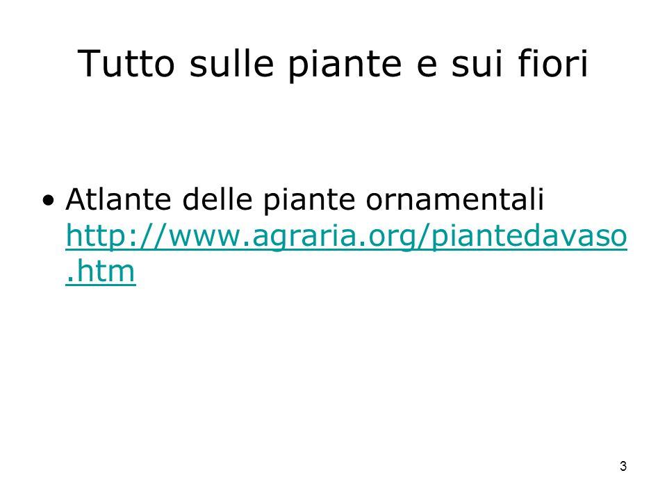 3 Tutto sulle piante e sui fiori Atlante delle piante ornamentali http://www.agraria.org/piantedavaso.htm http://www.agraria.org/piantedavaso.htm