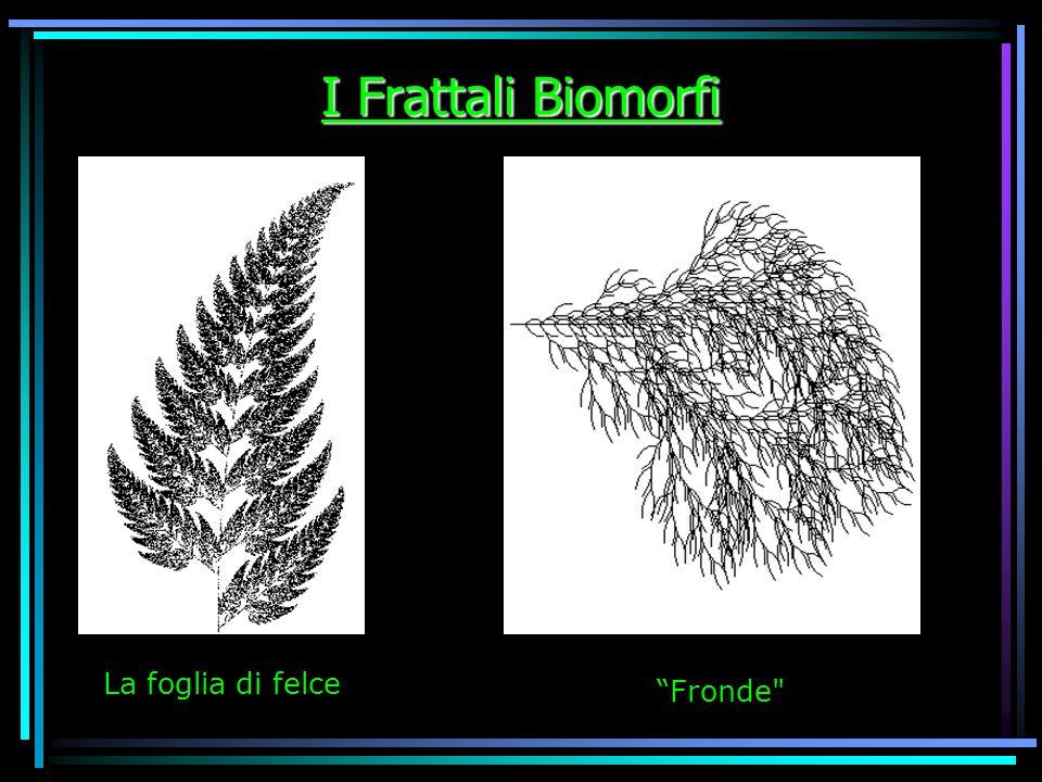 I Frattali Biomorfi La foglia di felce Fronde