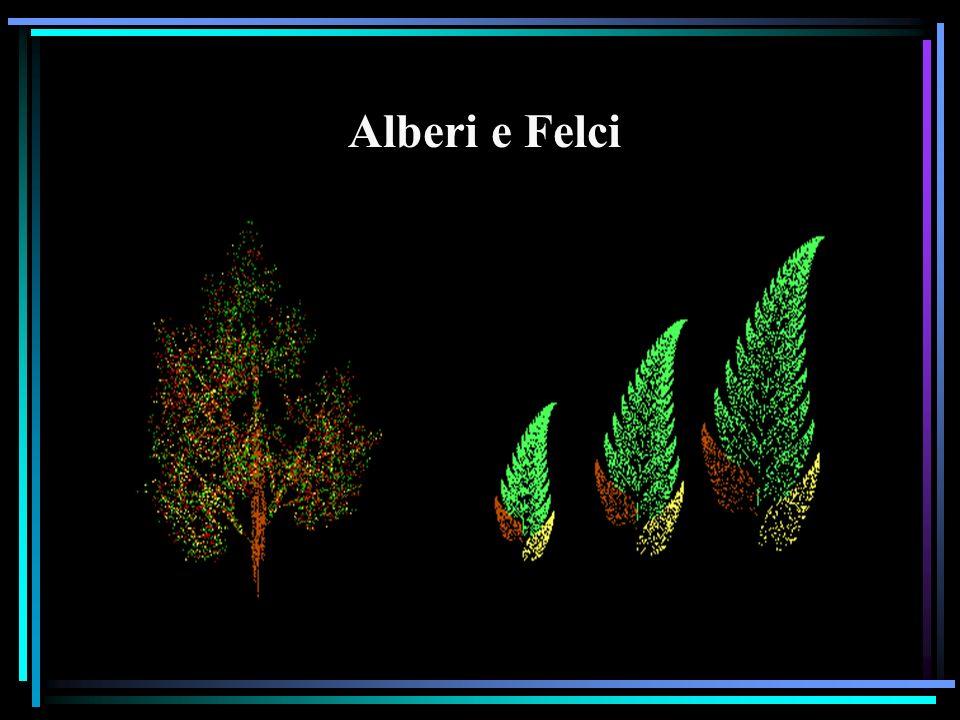 felci, agli alberi, ai fiori Alberi e Felci