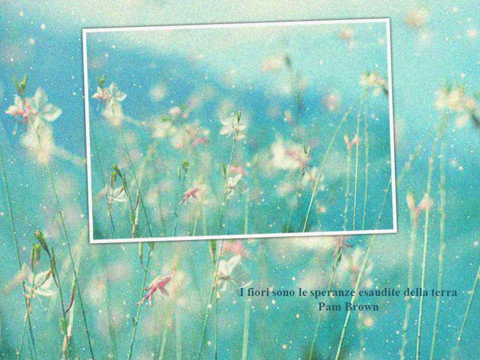 I fiori sono le creature più dolci che Dio abbia mai fatto e alle quali si sia dimenticato di infondere un'anima. H.W. Beecher