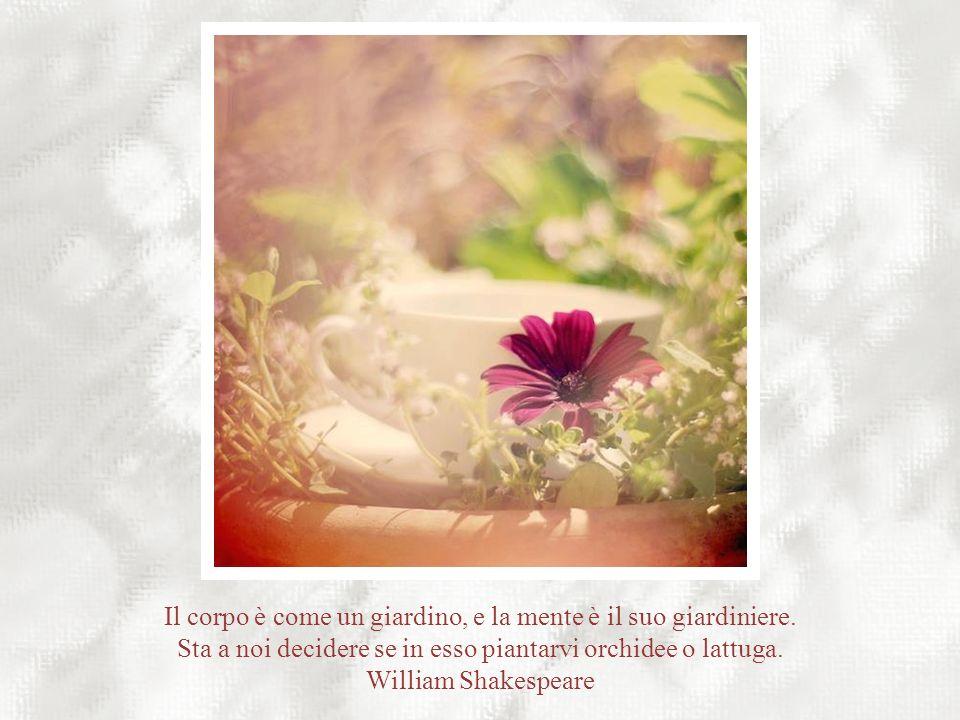 ...perciò pianta il tuo giardino e decora la tua anima invece di aspettare che qualcuno ti porti i fiori. Osho