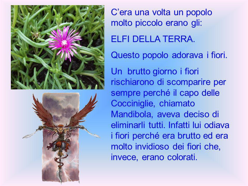 Cera una volta un popolo molto piccolo erano gli: ELFI DELLA TERRA.
