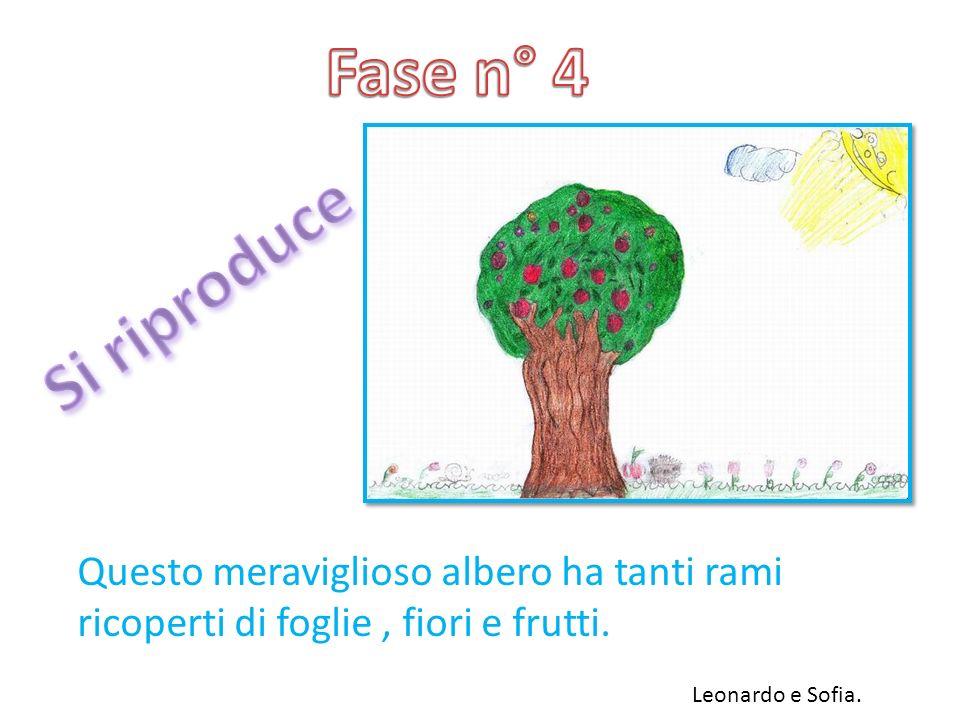 Questo meraviglioso albero ha tanti rami ricoperti di foglie, fiori e frutti. Leonardo e Sofia.
