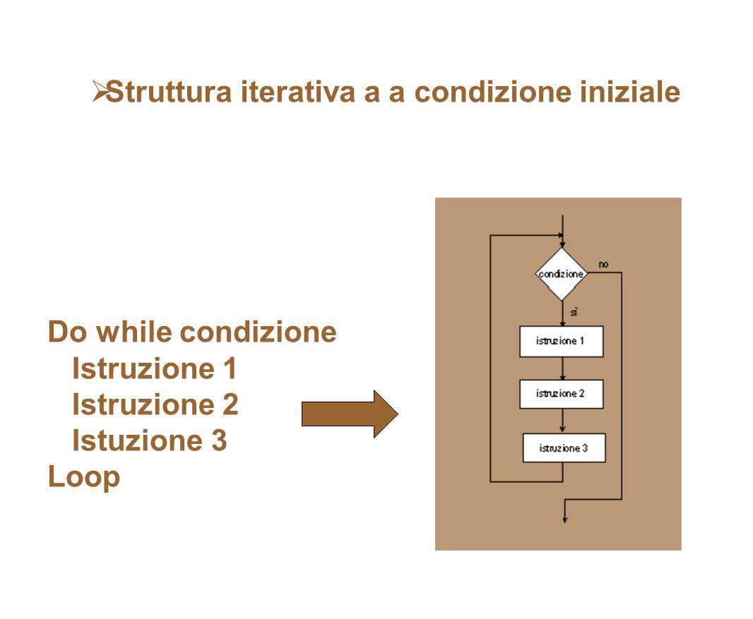 Struttura iterativa a a condizione iniziale Do while condizione Istruzione 1 Istruzione 2 Istuzione 3 Loop