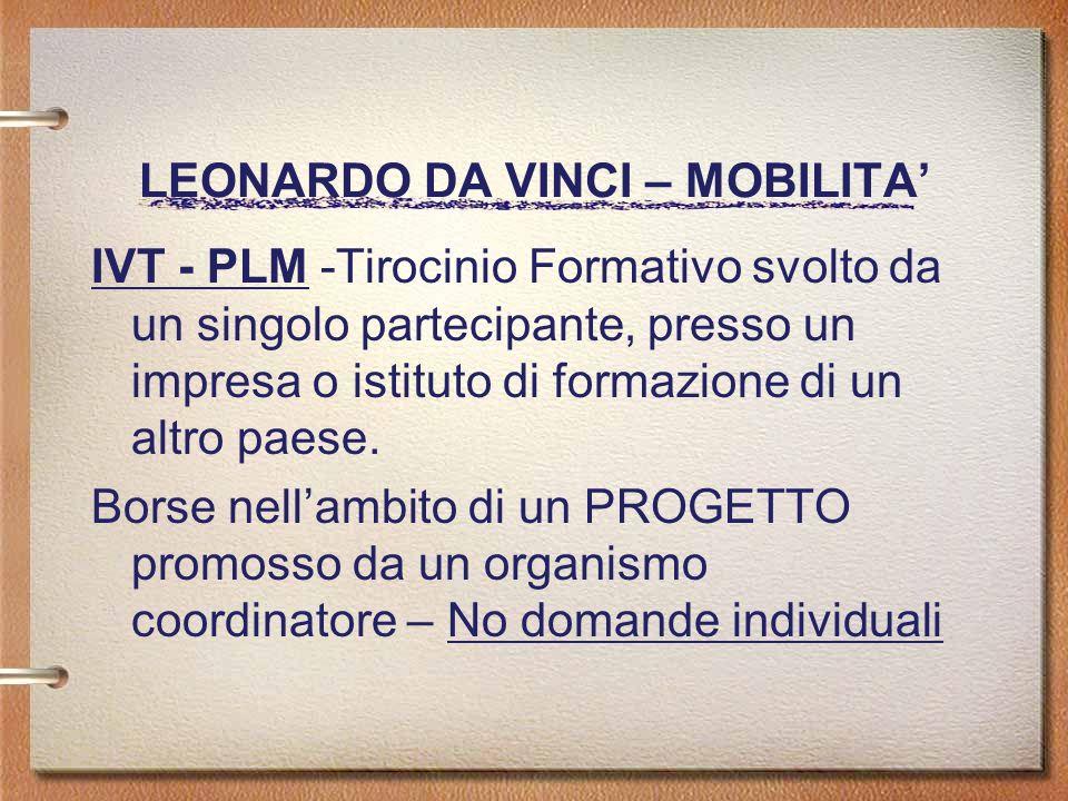 LEONARDO DA VINCI – MOBILITA IVT - PLM -Tirocinio Formativo svolto da un singolo partecipante, presso un impresa o istituto di formazione di un altro paese.