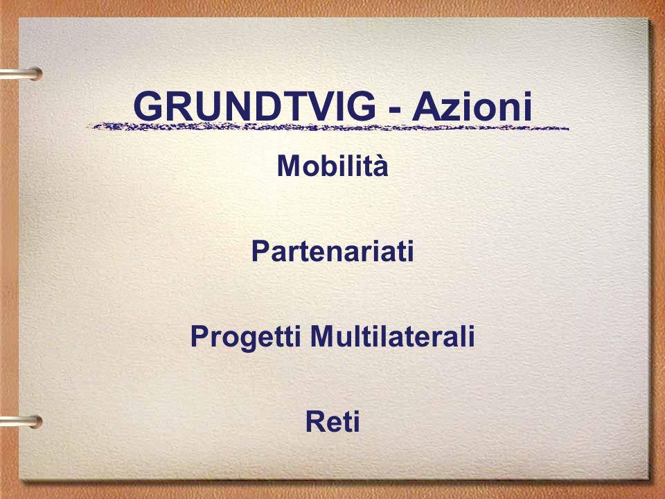 GRUNDTVIG - Azioni Mobilità Partenariati Progetti Multilaterali Reti