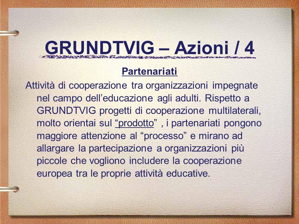 GRUNDTVIG – Azioni / 4 Partenariati Attività di cooperazione tra organizzazioni impegnate nel campo delleducazione agli adulti.