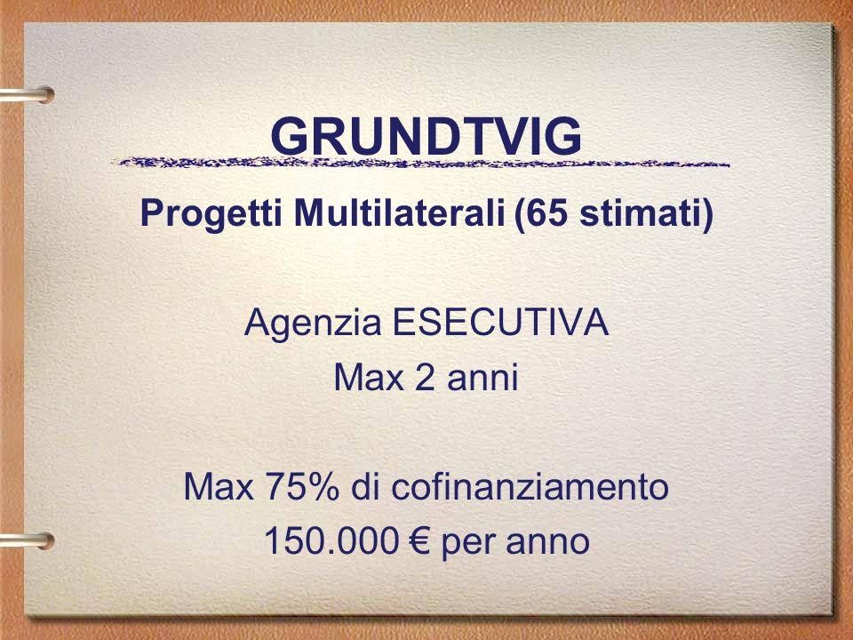 GRUNDTVIG Progetti Multilaterali (65 stimati) Agenzia ESECUTIVA Max 2 anni Max 75% di cofinanziamento 150.000 per anno