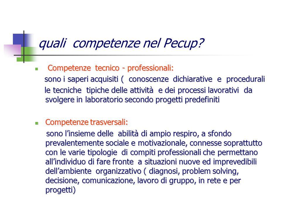quali competenze nel Pecup? Competenze tecnico - professionali: sono i saperi acquisiti ( conoscenze dichiarative e procedurali sono i saperi acquisit