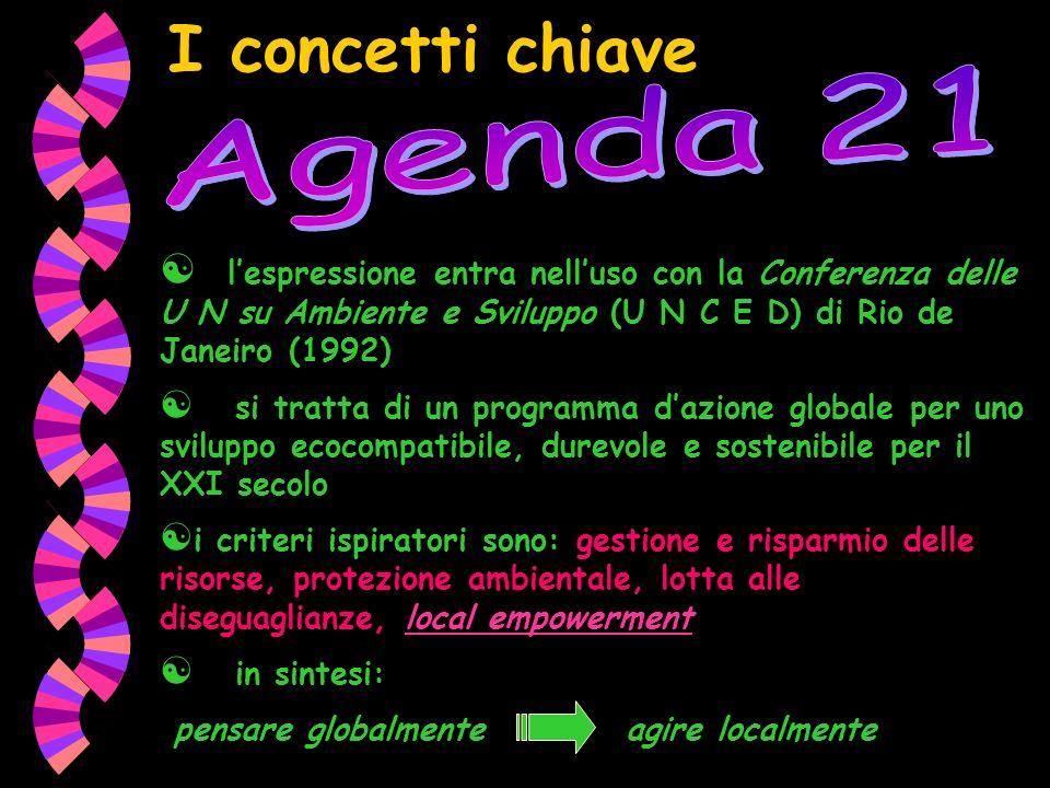 I concetti chiave lespressione entra nelluso con la Conferenza delle U N su Ambiente e Sviluppo (U N C E D) di Rio de Janeiro (1992) si tratta di un p