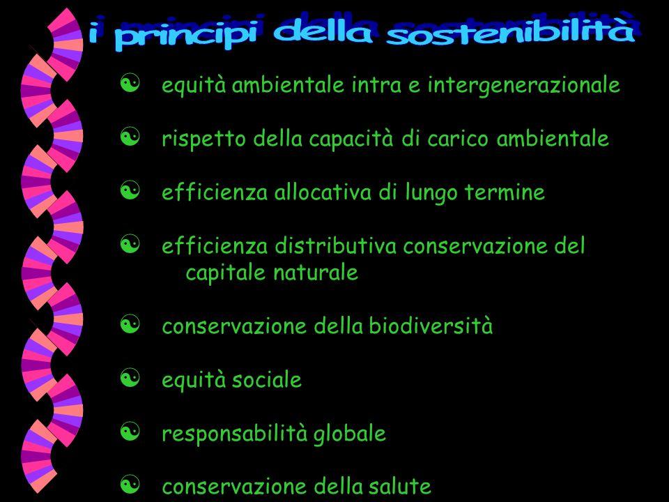 I concetti chiave La definizione più nota è quella contenuta nel RAPPORTO BRUNDTLAND Il nostro futuro comune (1987): Lo sviluppo sostenibile è quello sviluppo che in grado di soddisfare i bisogni della generazione presente, senza compromettere la possibilità che le generazioni future riescano a soddisfare i propri ma anche Lester Brown (Worldwatch Institute) Una società sostenibile è quella che soddisfa i propri bisogni senza ridurre le prospettive delle generazioni future