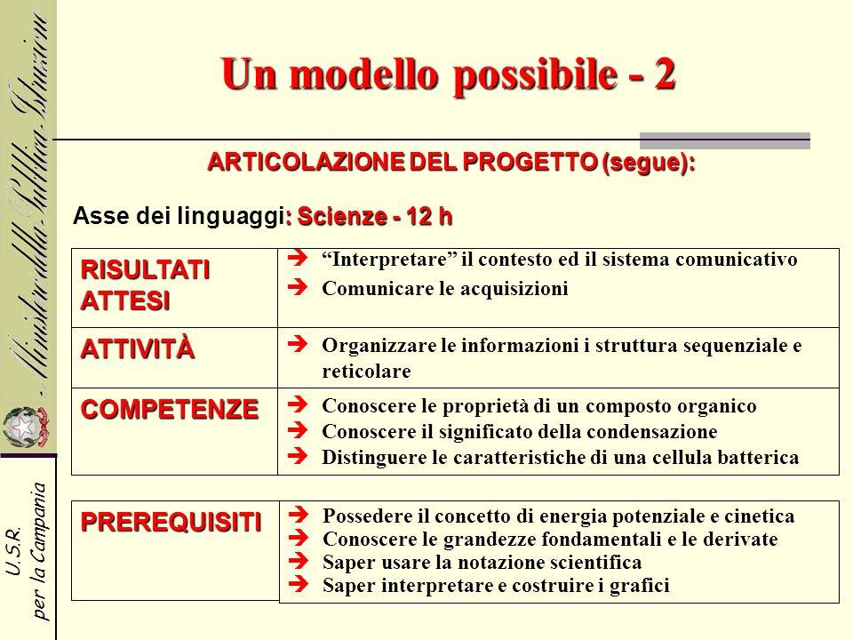 U.S.R. per la Campania Un modello possibile - 2 ARTICOLAZIONE DEL PROGETTO (segue): RISULTATI ATTESI ATTIVITÀ COMPETENZE Interpretare il contesto ed i