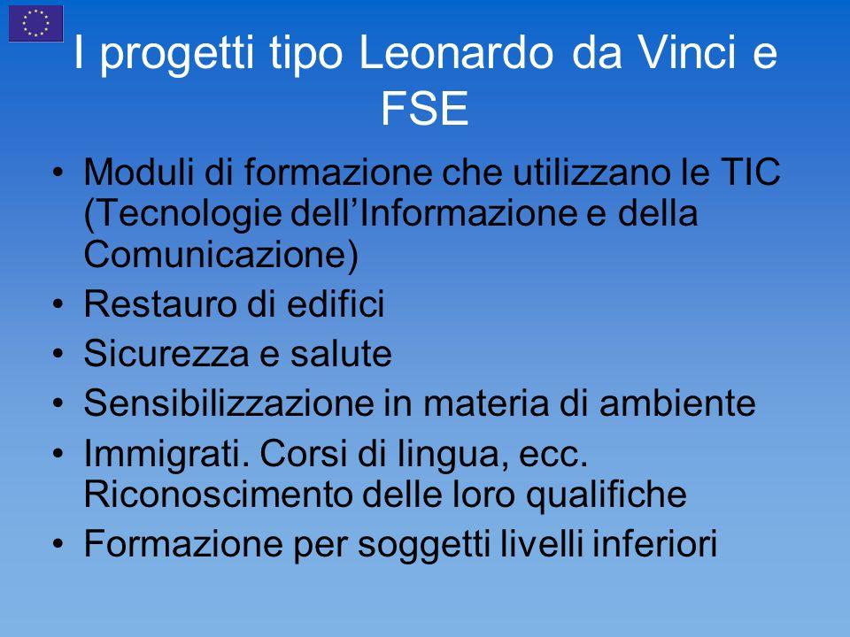 I progetti tipo Leonardo da Vinci e FSE Moduli di formazione che utilizzano le TIC (Tecnologie dellInformazione e della Comunicazione) Restauro di edifici Sicurezza e salute Sensibilizzazione in materia di ambiente Immigrati.